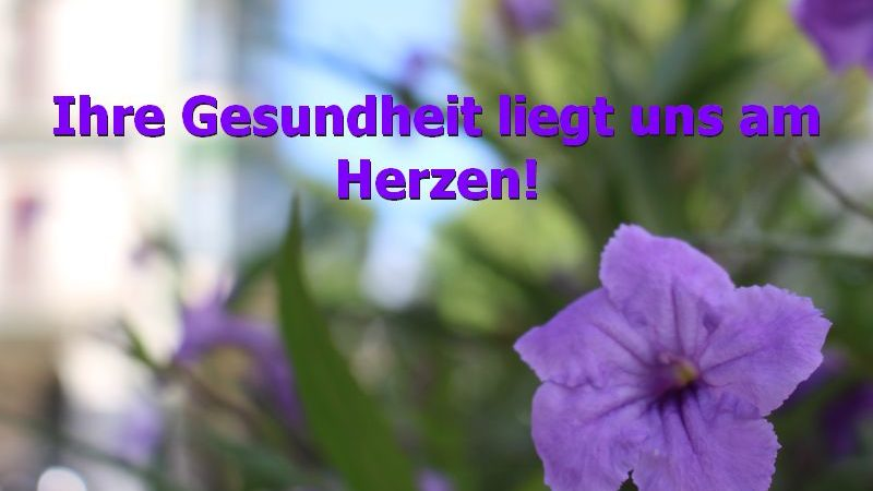 HCHS lullt Hamburg ein